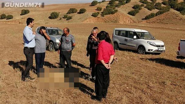 Kenanbey Obası Köyünde Kurtlar Koyunlara Saldırdı