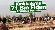 Kırıkkale'de 71 Bin Fidan Toprakla Buluştu