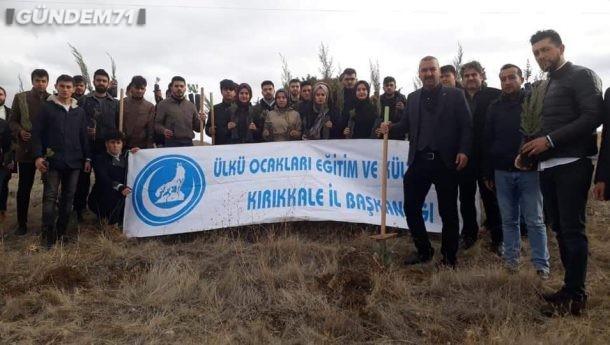 Kırıkkale Ülkü Ocakları Ağaçsız Alanlara 250 Adet Fidan Dikti