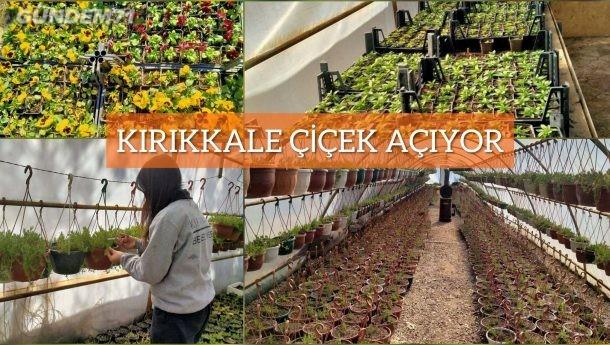 Kırıkkale Belediyesi Park Bahçeler Müdürlüğü Bahar Çalışmalarına Başladı