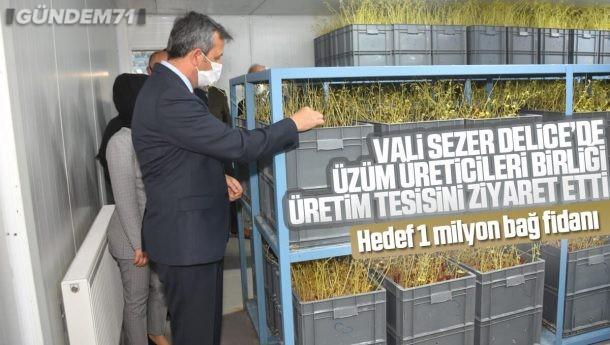 Vali Sezer, Delice'de Üzüm Üreticileri Birliği Üretim Tesisini Ziyaret Etti
