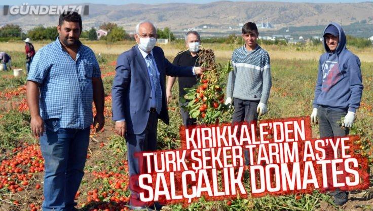 Kırıkkale'den Türk Şeker Tarım AŞ'ye Salçalık Domates