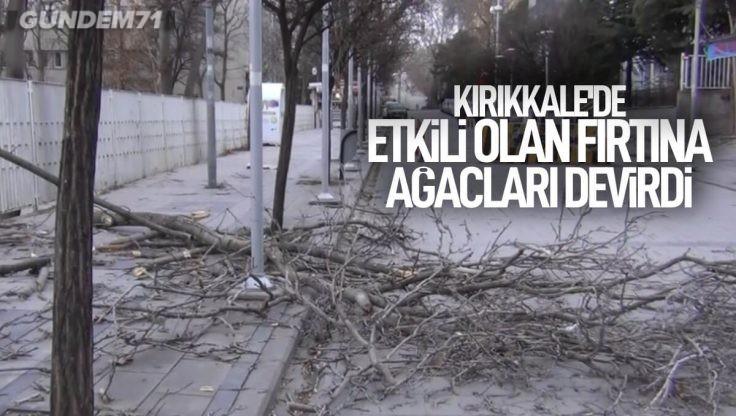 Şiddetli Rüzgar Hayatı Olumsuz Etkileyerek Ağaçları Devirdi