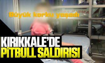 Kırıkkale'de Minik Çocuk Evlerinin Önünde Pitbull Saldırısına Uğradı
